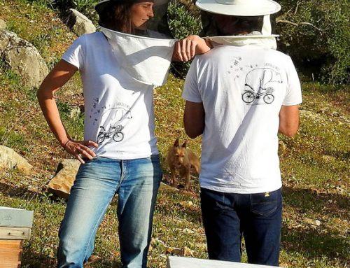 Ladrón de Miel: su camiseta con logo eco ética